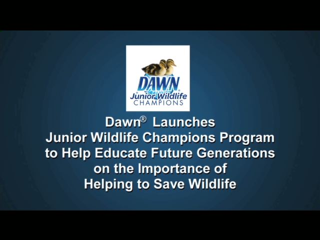 Dawn continues its 30-year commitment to helping save wildlife by creating and deploying educational materials and lesson plans for teachers and parents