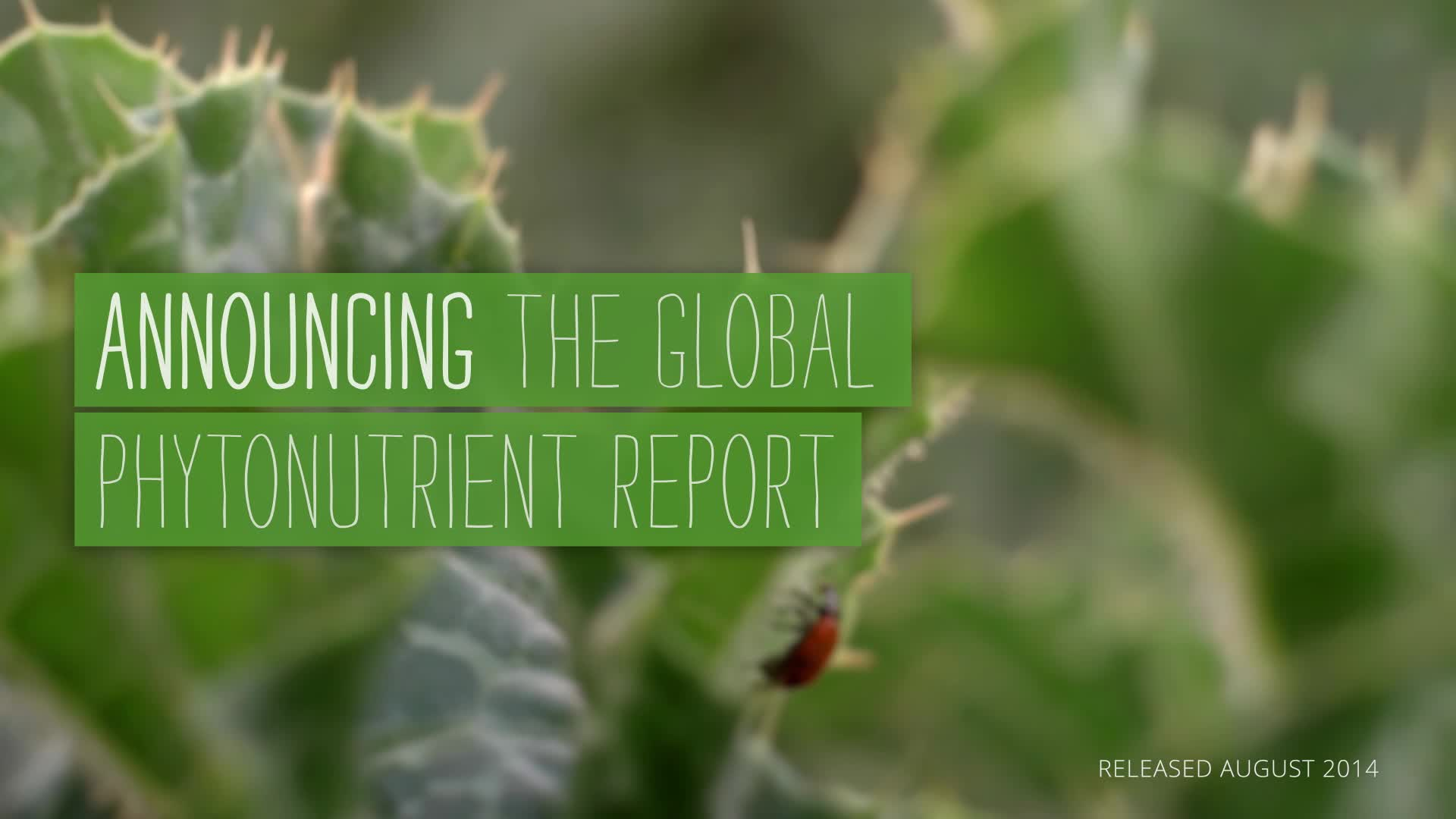 Research co-author Dr. Keith Randolph discusses the significance of the Global Phytonutrient Report.