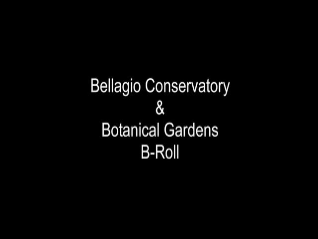 WINTER WONDERLAND ARRIVES AT BELLAGIO'S CONSERVATORY & BOTANICAL GARDENS