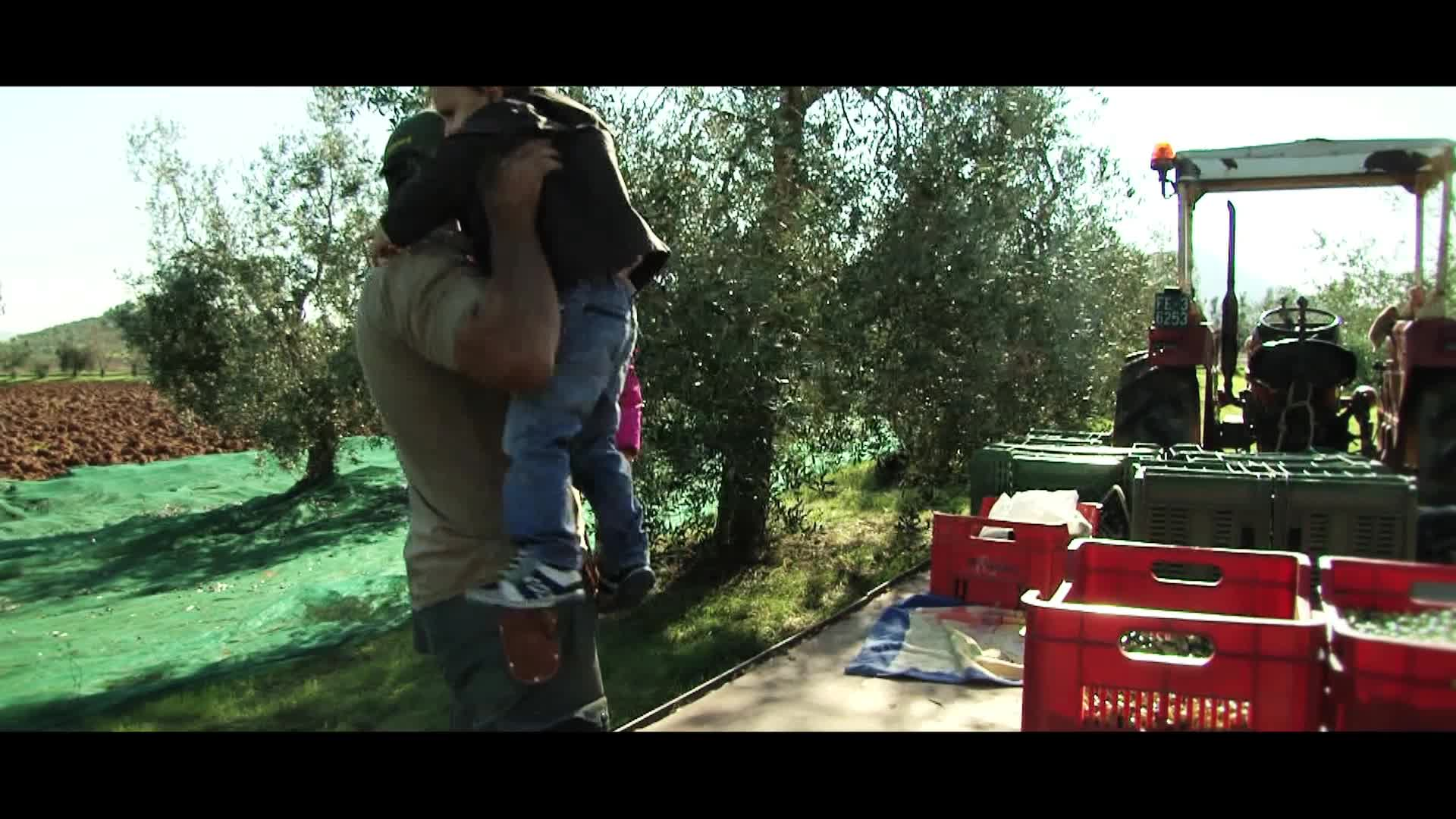 Cristina and Margherita Barco's family has been working the land since the 30's and they have always had an olive grove to get their oil from. They have since expanded their land and now produce olives for Bellucci's Extra Virgin Olive Oil for the entire world to enjoy.