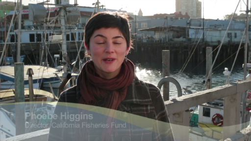 Phoebe Higgins, Director of the California Fisheries Fund at EDF, discusses how the fund is helping to ensure the sustainability and profitability of fisheries on the West Coast.