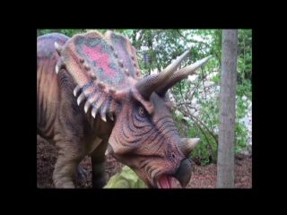 B-roll of Dinosaurs Alive at Kings Island.