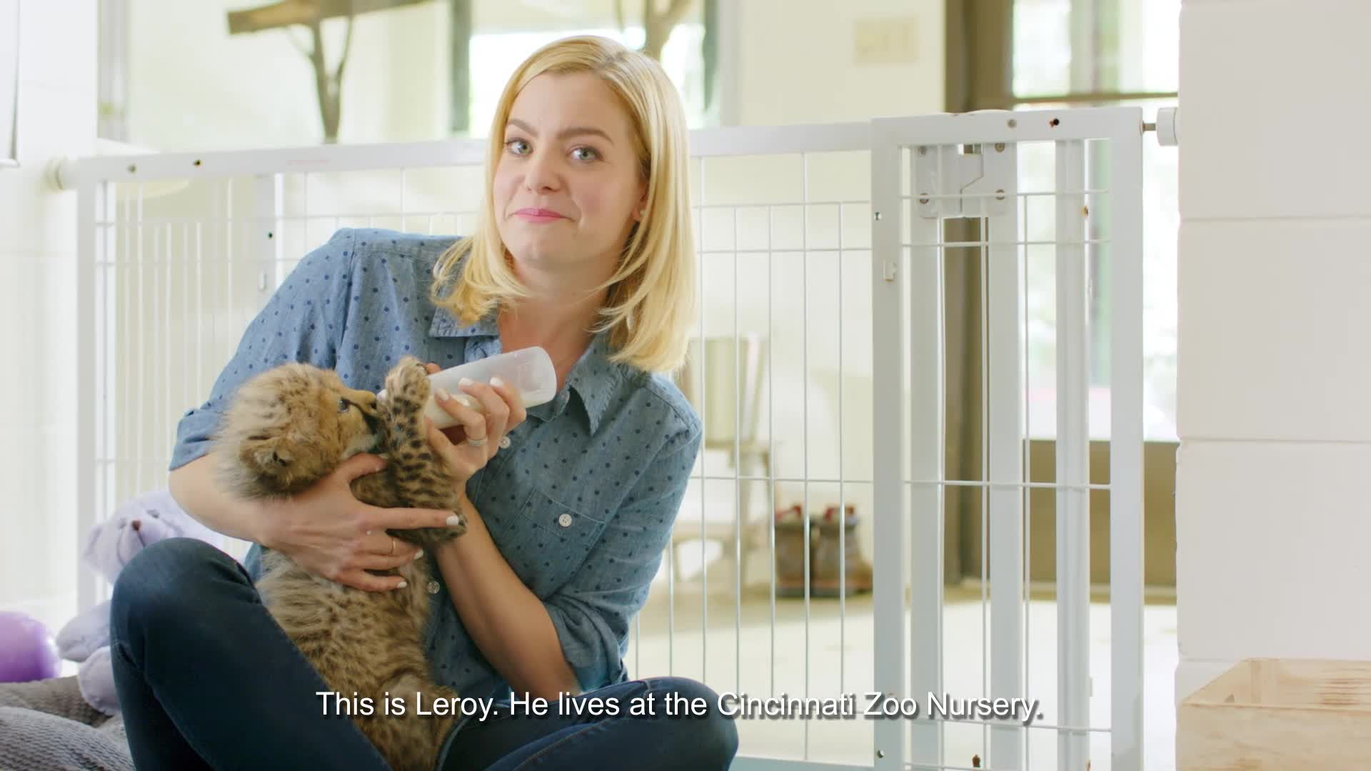 Tommee Tippee® Helps Parents Donate Unwanted Baby Bottles to Orphaned Newborn Animals