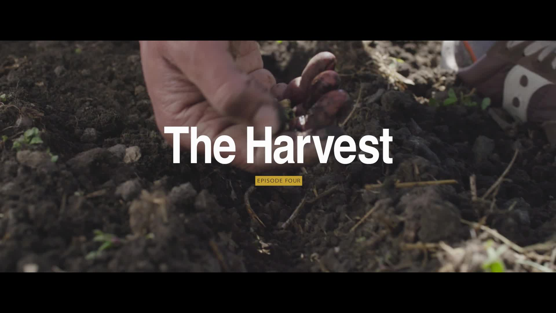 Five years after his near-death experience, Chef Eduardo Garcia is back in his home state of Montana and starring in The Harvest, the forth short film in The Sky's the Limit video series.